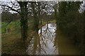 TQ0630 : Wey & Arun canal, Drungewick by Christopher Hilton