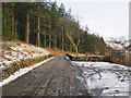 NY3019 : Minor road north of Thirlmere by Trevor Littlewood