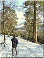 SK0074 : Path to Errwood Reservoir : Week 5