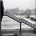 TL4653 : Footbridge in the snow : Week 5