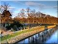 SD5328 : River Ribble, Avenham Park by David Dixon