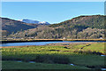 SH6918 : The Mawddach above Penmaenpool by Nigel Brown