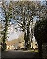 SX2153 : Trelawne Manor Holiday Park by Derek Harper