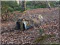 SU8661 : Sandhurst training area by Alan Hunt
