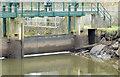 J3470 : The Stranmillis weir (open), Belfast (February 2015) by Albert Bridge