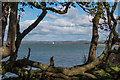 SZ7899 : Chichester Harbour by Ian Capper