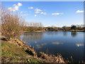 SP7307 : Lake near Haddenham by Des Blenkinsopp