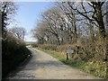 SX2490 : Farm lane to Braywood Farm by Derek Harper