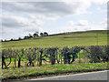 SP7515 : Old land slips, Waddesdon Hill by Robin Webster