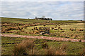 SD7220 : A footbridge on the path to Cuckoldmans by Ian Greig