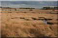 NS8073 : East Fannyside Loch by Anne Burgess