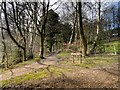 SD6527 : Witton Park, Path into Crow Wood by David Dixon