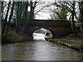 SJ9380 : Macclesfield Canal:  Ryles Bridge No 10 by Dr Neil Clifton