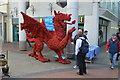 SN5000 : Red Tory Dragon : Week 14