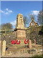 SJ8048 : Alsagers Bank: war memorial by Jonathan Hutchins