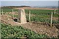 NJ6845 : Hill of Cleftbog by Anne Burgess