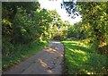 SJ7882 : Breach House Lane westwards by Andrew Tatlow