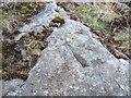 SS9798 : Ordnance Survey Rivet by Adrian Dust