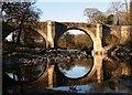 SD6178 : Devil's Bridge : Week 16