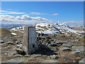 NN4432 : Trig Pillar on Beinn Cheathaich : Week 15