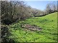 SX3672 : Meadow below Higher Crockett by Derek Harper