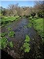 SX2874 : River Lynher at Bathpool by Derek Harper