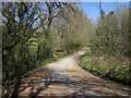 SX2871 : Old road, Upton Cross by Derek Harper