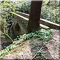 SJ9493 : Footbridge at Pole Bank by Gerald England