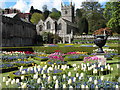 SX0863 : Tulips in the gardens at Lanhydrock House : Week 17
