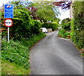 ST7859 : Tight bend ahead on Ashes Lane, Freshford by Jaggery