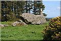 NJ9547 : Aikey Brae Recumbent Stone Circle (4) by Anne Burgess