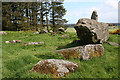 NJ9547 : Aikey Brae Recumbent Stone Circle (5) by Anne Burgess