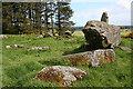 NJ9547 : Aikey Brae Recumbent Stone Circle (5) by Anne Burgess