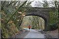 SX5259 : Bridge over the West Devon Way by N Chadwick