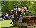 ST8182 : Badminton Horse Trials 2015: Dee Hankey and Chequers Playboy : Week 19