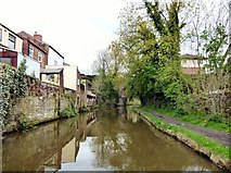 SJ9392 : Peak Forest Canal at Woodley by Gerald England