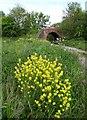 "SE4405 : ""Rob Coats!"" - old railway bridge near Thurnscoe by Neil Theasby"