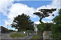 SW9372 : Trevilgus Farm by John Myers