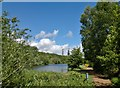 SK5962 : Vicar pond in Vicar Waters Country Park by Chris Morgan