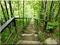 SD6811 : The 63 Steps, Barrow Bridge by Philip Platt