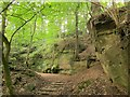 ST6376 : Path through quarry by the Frome by Derek Harper