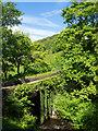 SE0024 : Spa Bridge in Cragg Vale : Week 22