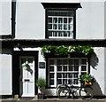 SP5106 : 14 Holywell Street, Oxford : Week 23