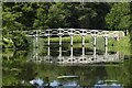 TQ0959 : Bridge, Painshill Park : Week 23