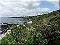 SW8836 : Coastline near Portscatho by David Brown