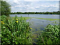 TQ2187 : Yellow flag in the Brent Reservoir by Marathon
