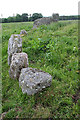 NO9096 : Aquhorthies Recumbent Stone Circle (10) by Anne Burgess