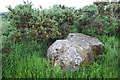 NO8996 : Auchlee Recumbent Stone Circle (4) by Anne Burgess