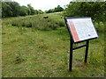 TF0802 : Southorpe Paddock Nature Reserve by Richard Humphrey