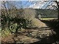 SX3973 : Lane to Lamerhooe Ford by Derek Harper